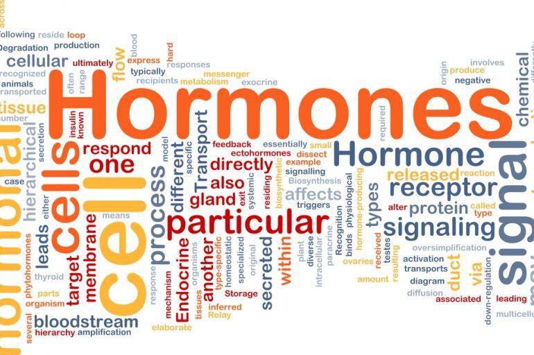 Las hormonas…..